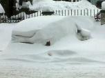 Cold - err where's my car?!