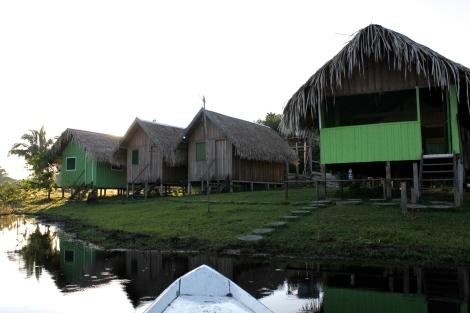 jungle lodge amazon