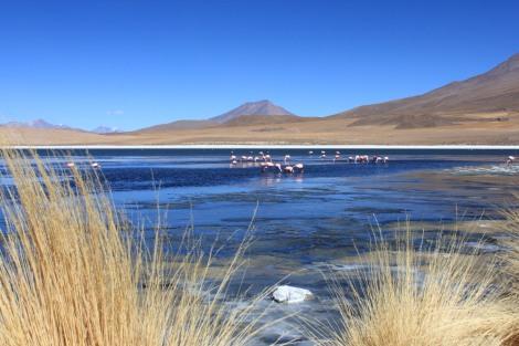 Salt Flats Uyuni Tour
