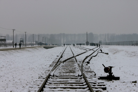Train Tracks Auschwitz Birkenau