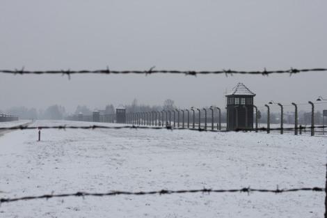 Auschwitz Birkenau