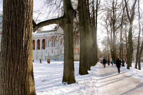 walking tsartsyno