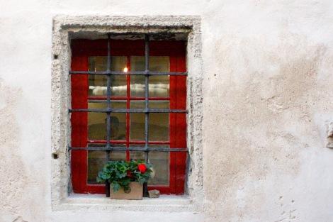 window tallinn